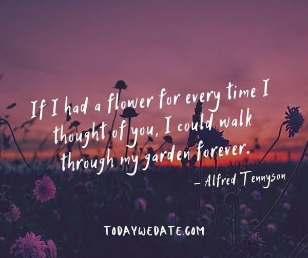 If I had a flower for every time I thought of you, I could walk through my garden forever.  - Alfred Tennyson- bittersweet love quotes for the one on your mind - TodayWeDate.com